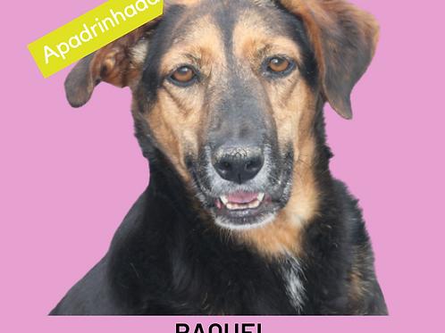 Raquel-parelheiros