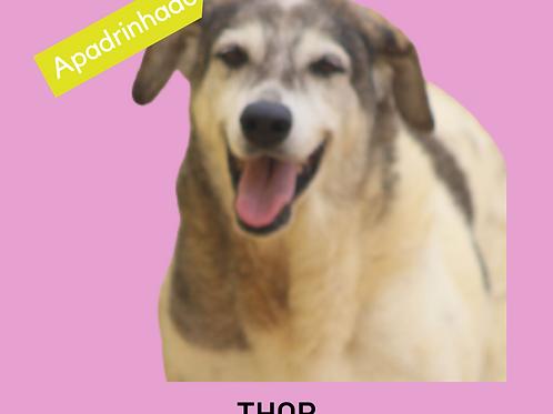 Thor-vitória
