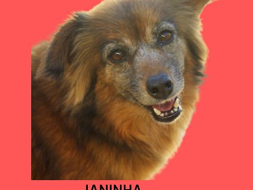 Janinha-300 Anjos
