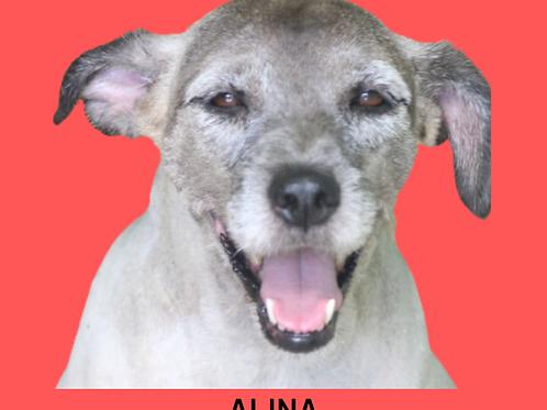 Alina-Sr. Claudio