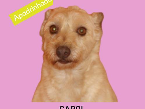 Carol-parelheiros