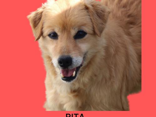 Rita-Sr. Claudio