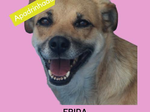 Frida-caucaia