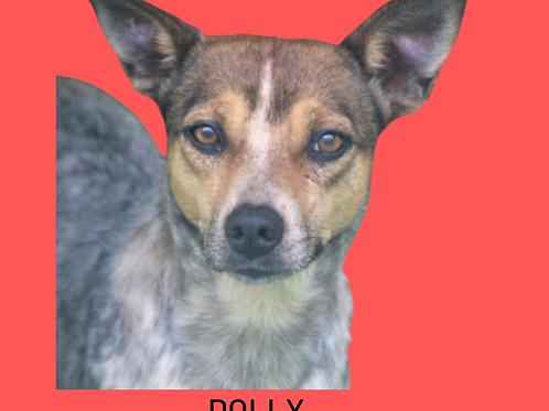 Dolly-caucaia