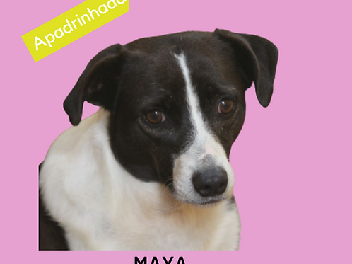 Maya-Sr. Claudio
