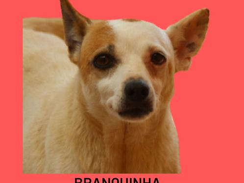 Branquinha-parelheiros