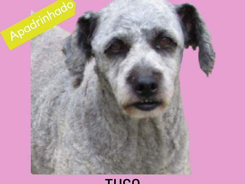 Tuco-rogério