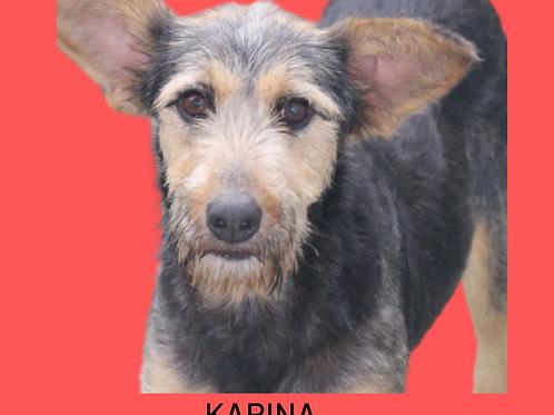 Karina-embu