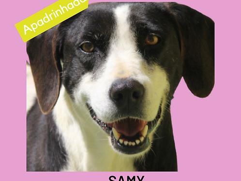 Samy-parelheiros