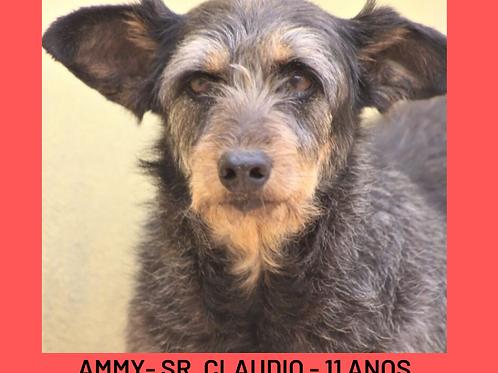 Ammy-Sr. Claudio