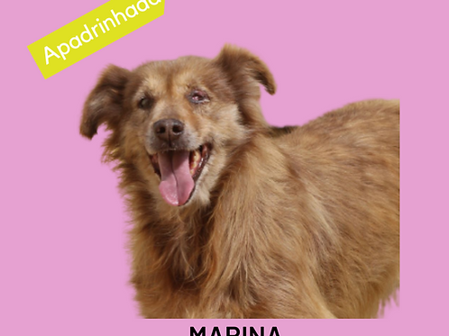Marina-Sr. Claudio
