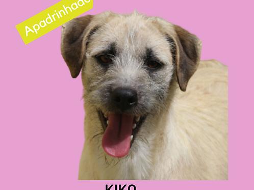 Kiko-caucaia