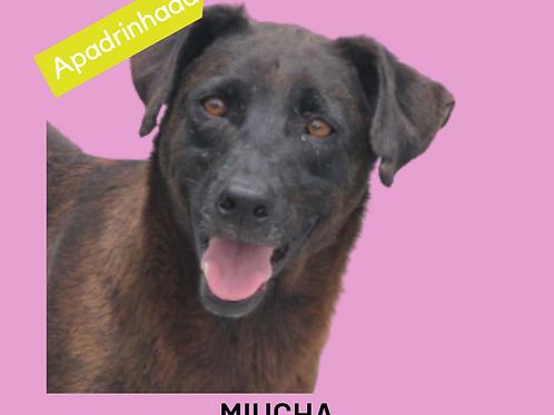 Miucha-magali