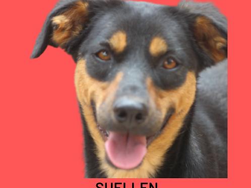 Suellen-mel