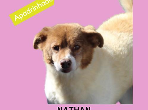 Nathan-parelheiros