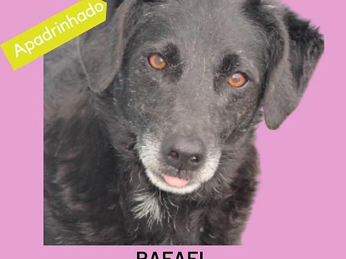 Rafael-amiga