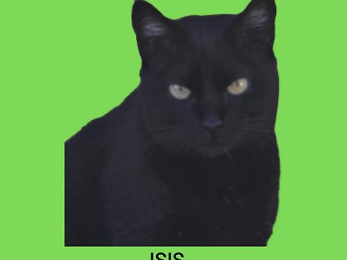Isis-gata