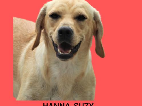 Hanna-Suzy