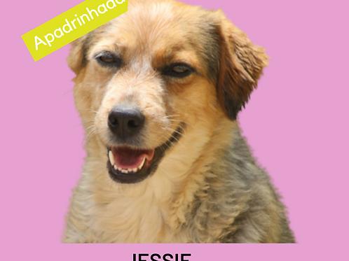 Jessie-300 Anjos