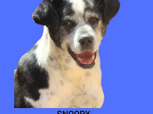 Snoopy-parelheiros