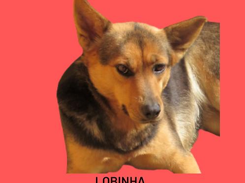 Lobinha