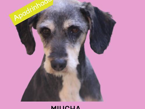 Miucha-Sr. Claudio