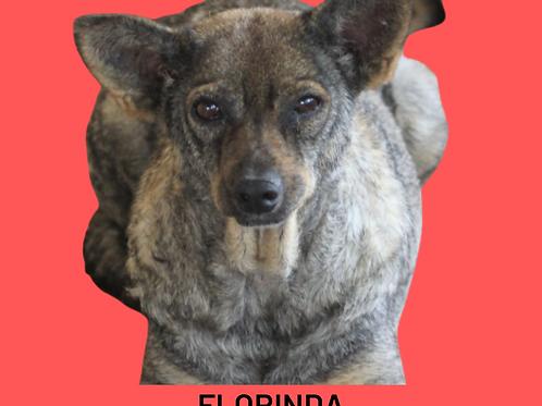 Florinda-embu