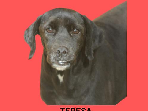 Teresa-Sr. Claudio
