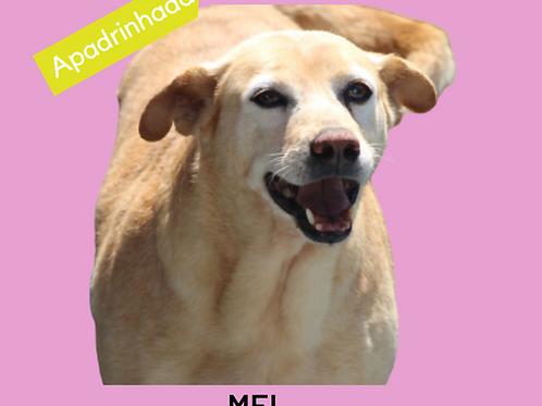 Mel-pedreira