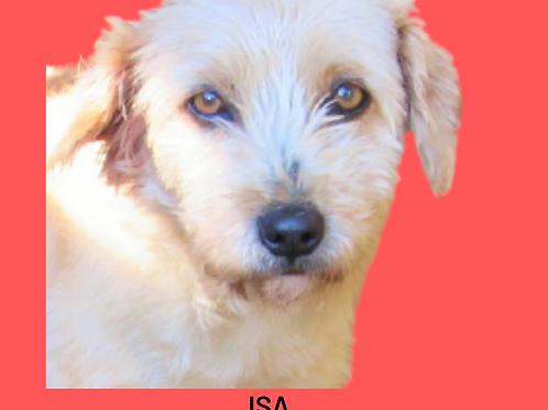 Isa-cherry