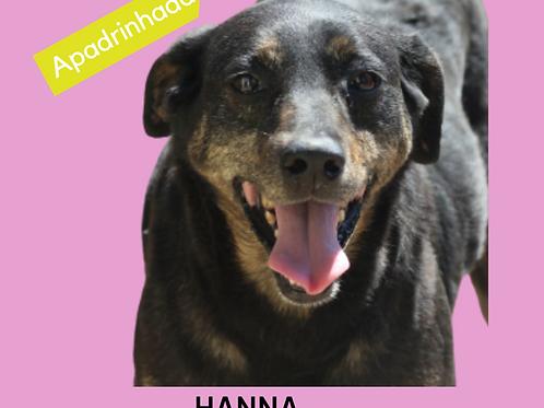 Hanna-II-300 Anjos