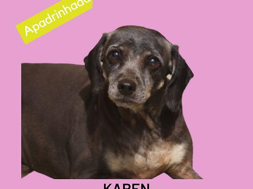 Karen-300 Anjos