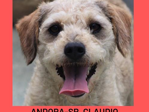 Andora-Sr. Claudio