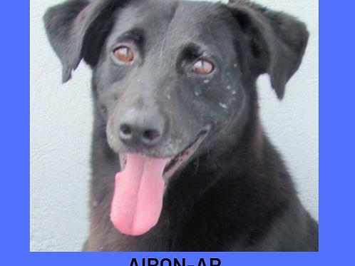 Airon-AP