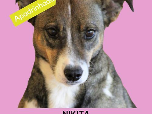 Nikita-embu