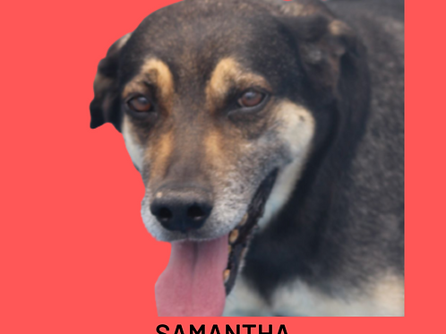 Samantha-sandra