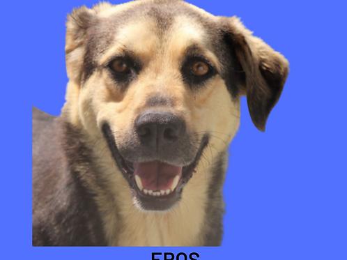 Eros-madona