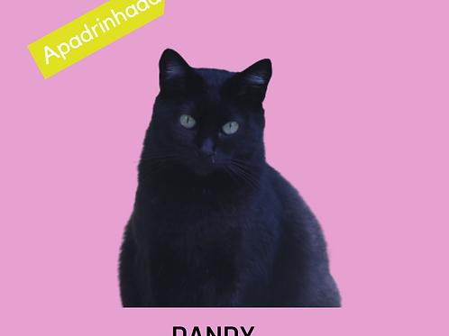 Dandy-gata