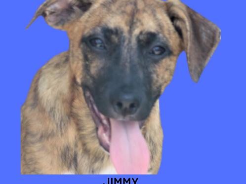 Jimmy-sandra