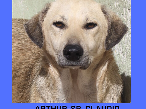 Arthur-Sr. Claudio