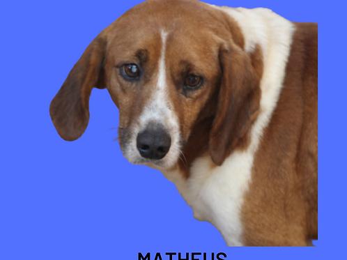 Matheus-sandra