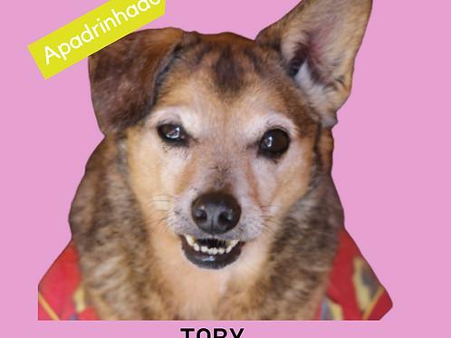 Toby-brasilândia