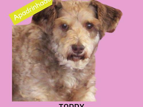 Toddy-parelheiros