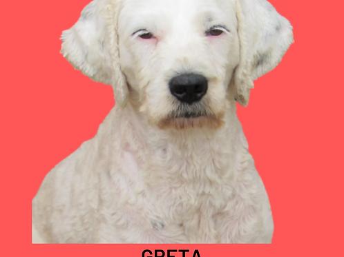 Greta-300 Anjos