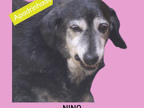 Nino-Sr. Claudio
