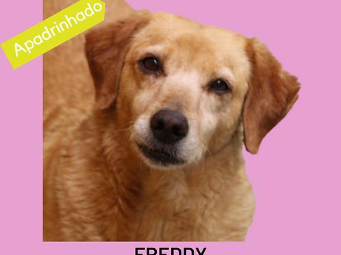 Freddy-embu