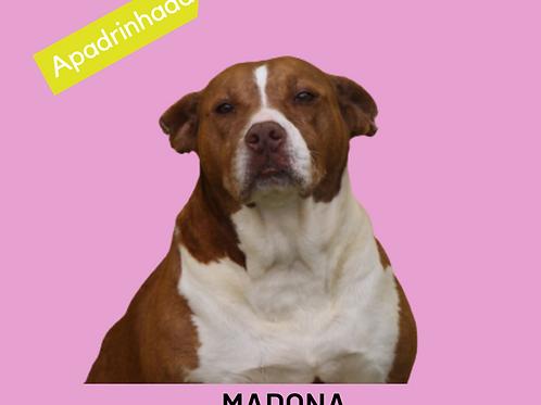 Madona-Sr. Claudio