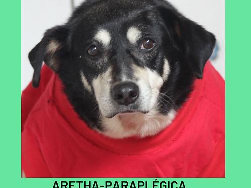 Aretha-parelheiros