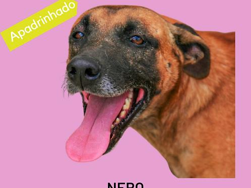 Nero-parelheiros