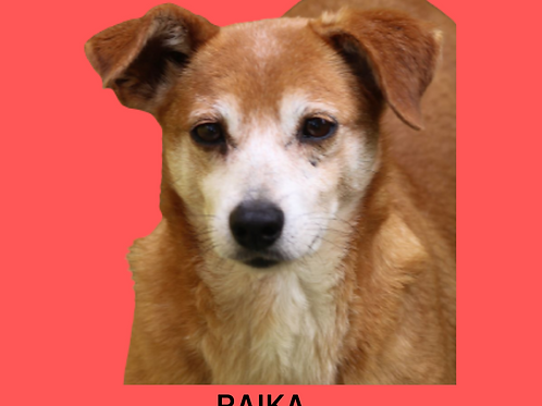 Raika-embu